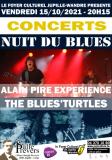 NUIT DU BLUES-CONCERTS